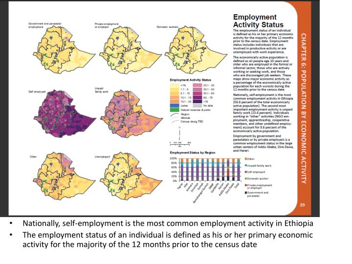 Nationally, self-employment is the most common employment activity in Ethiopia