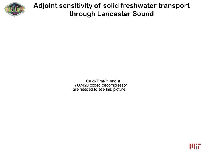 Adjoint sensitivity of solid freshwater transport