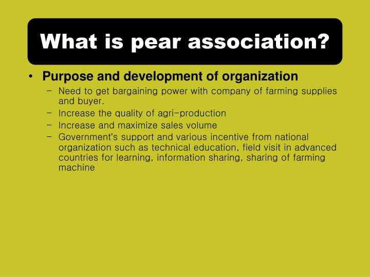 What is pear association?