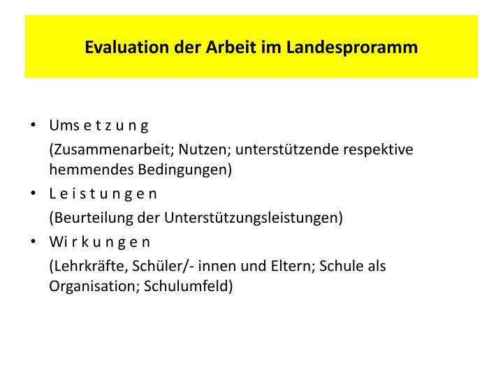 Evaluation der Arbeit im Landesproramm