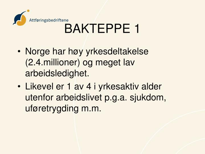 BAKTEPPE 1