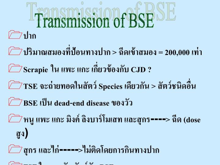 Transmission of BSE