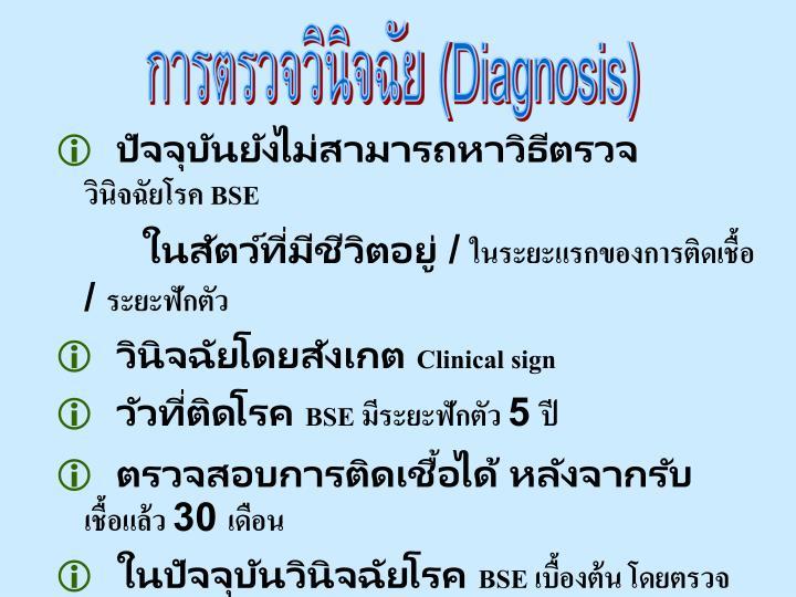 การตรวจวินิจฉัย (
