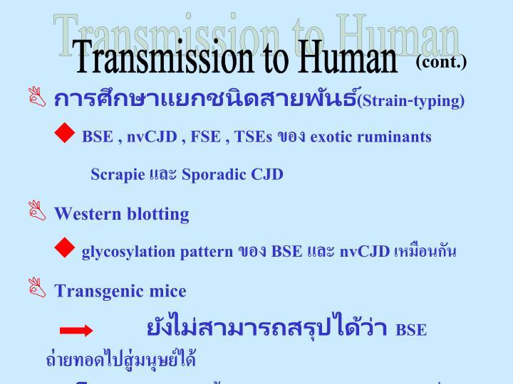 Transmission to Human