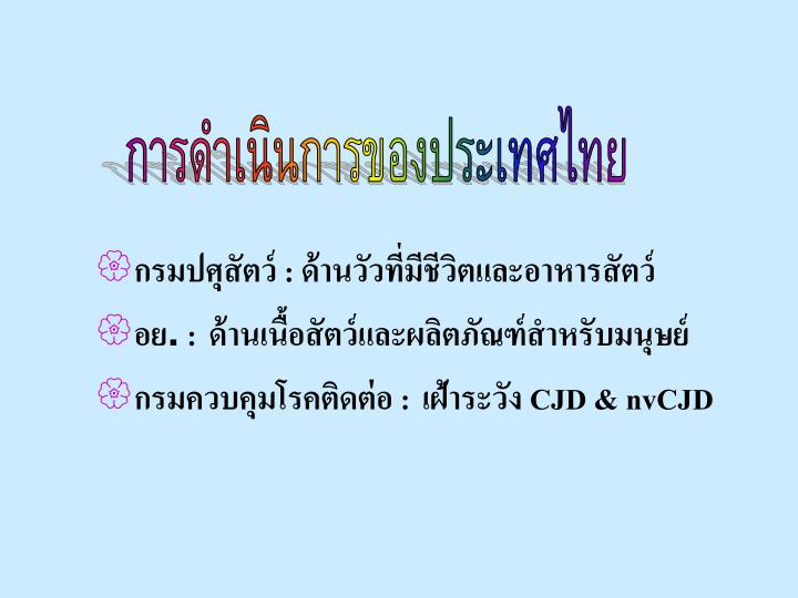 การดำเนินการของประเทศไทย