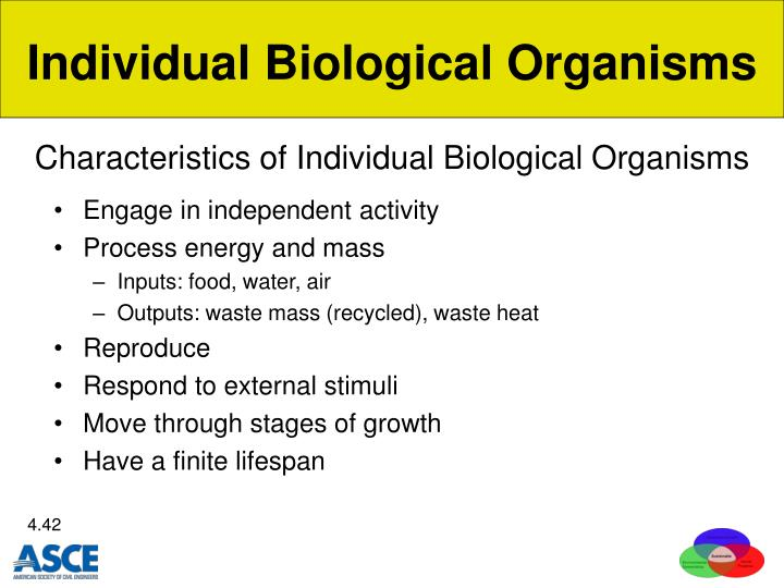 Characteristics of Individual Biological Organisms