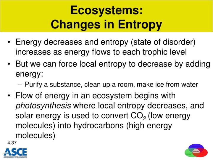 Ecosystems:
