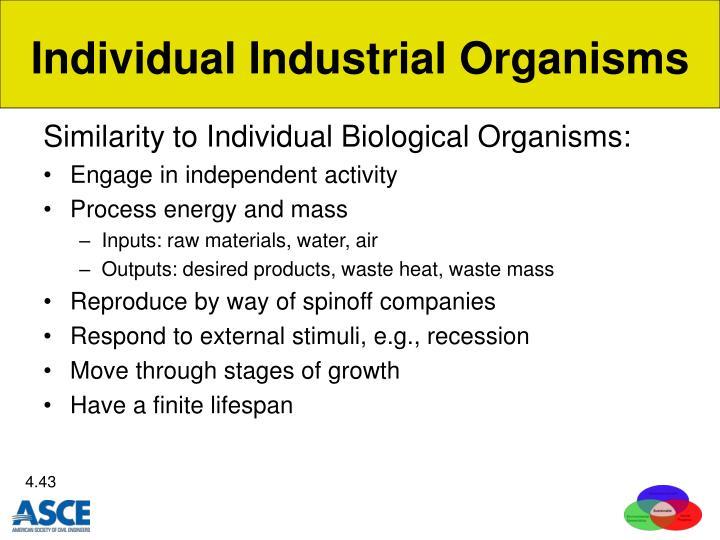Individual Industrial Organisms