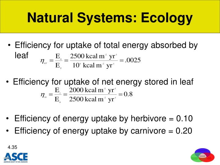 Natural Systems: Ecology