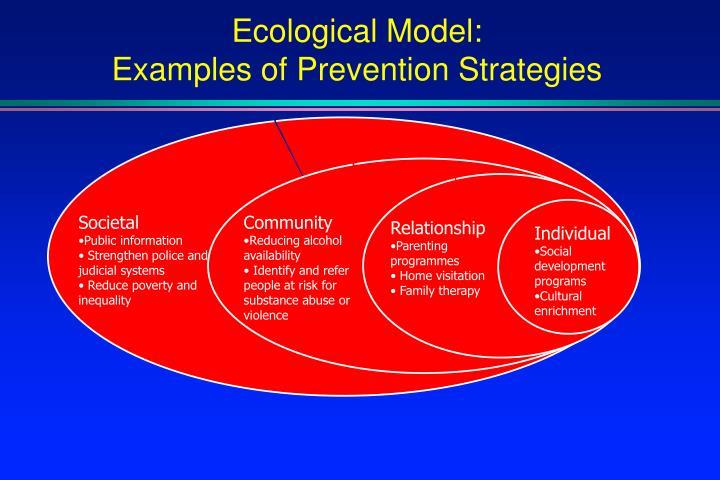 Ecological Model: