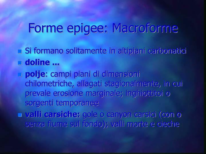 Forme epigee: Macroforme