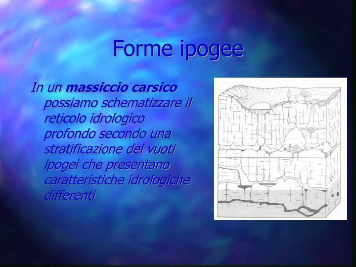 Forme ipogee