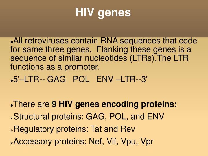 HIV genes