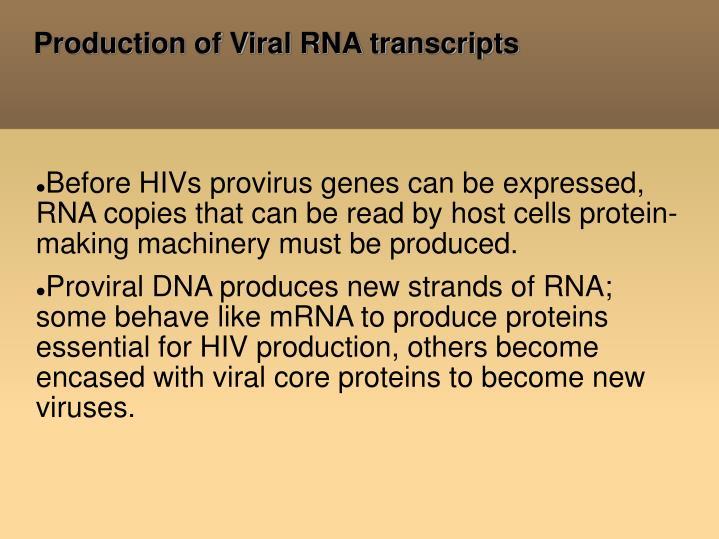 Production of Viral RNA transcripts