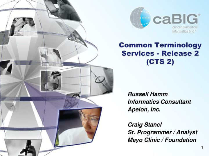 Common terminology services release 2 cts 2