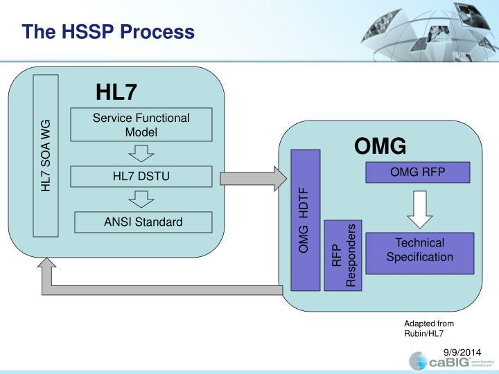 The HSSP Process