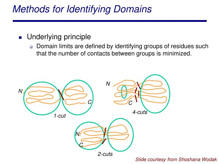 Methods for Identifying Domains