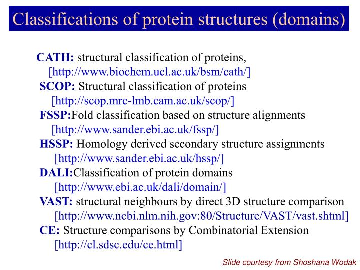 Classifications of protein structures (domains)