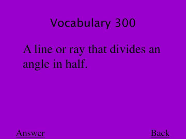 Vocabulary 300