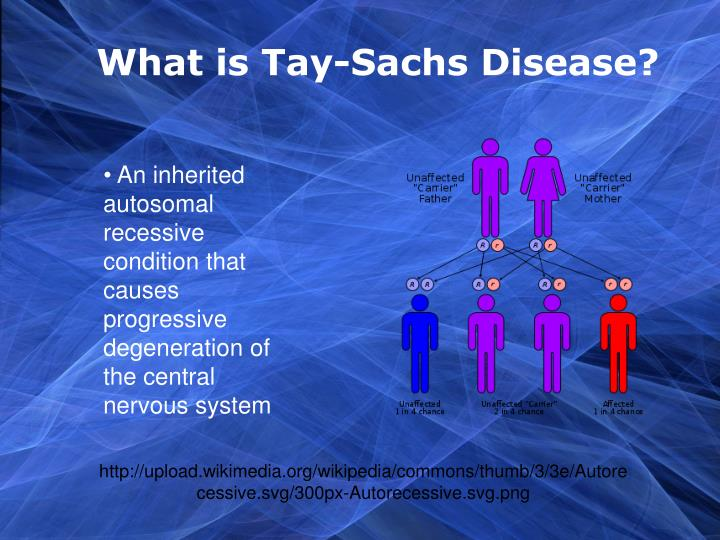 What is Tay-Sachs Disease?