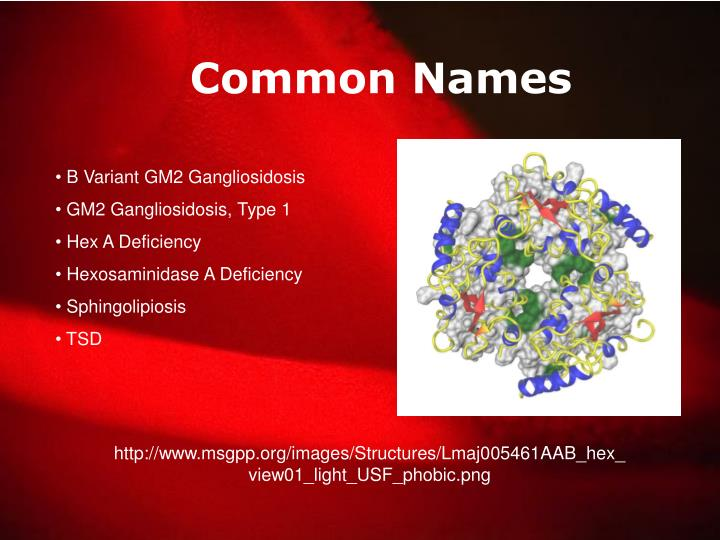 Common Names