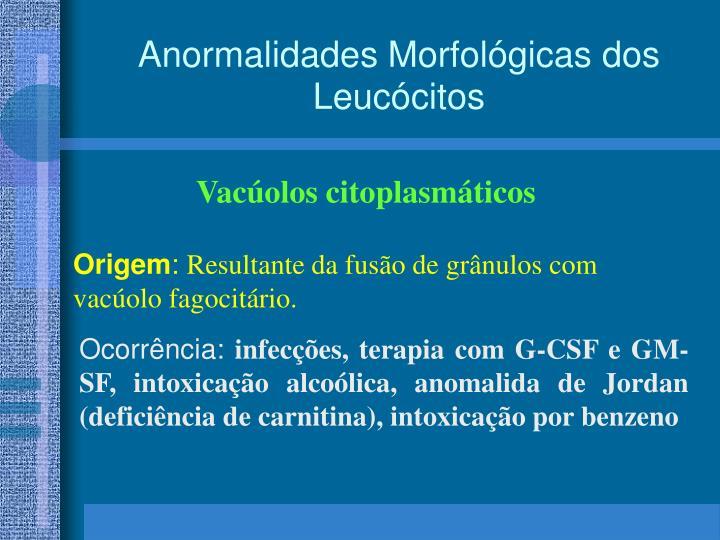 Anormalidades Morfológicas
