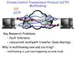 stream control transmission protocol sctp multihoming