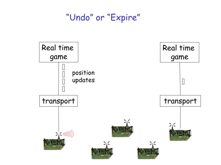 """Undo"" or ""Expire"""