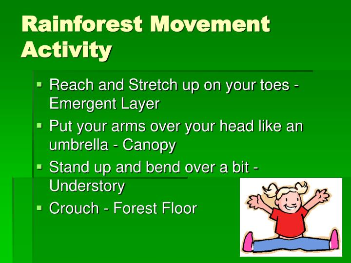Rainforest Movement Activity