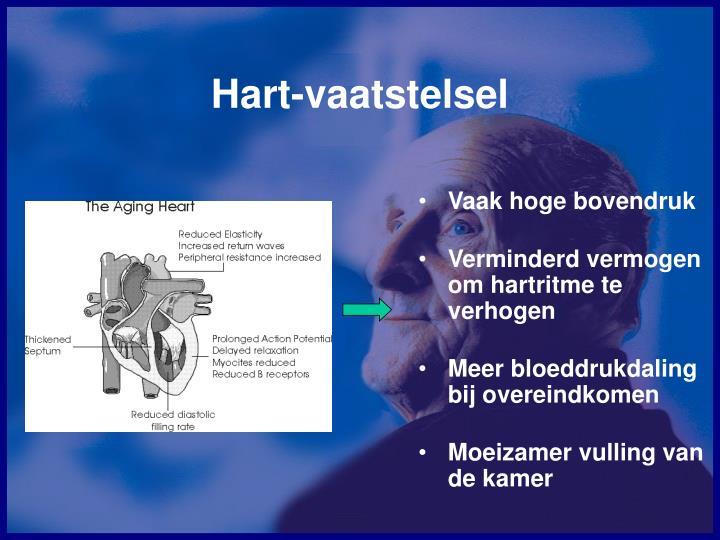 Hart-vaatstelsel