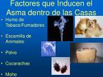 factores que inducen el asma dentro de las casas