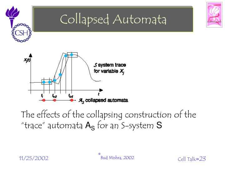 Collapsed Automata