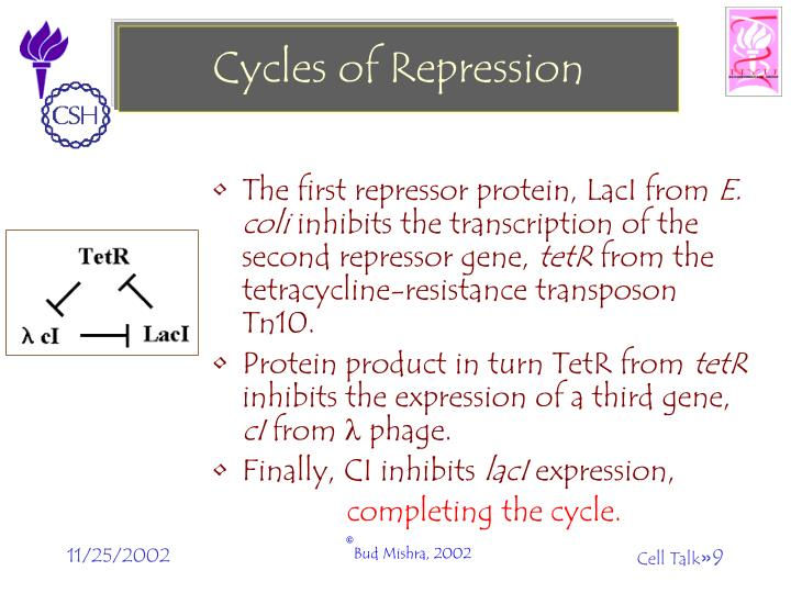 Cycles of Repression