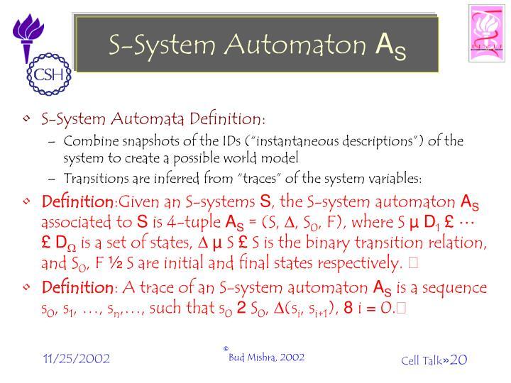 S-System Automaton