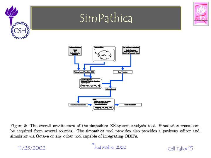 SimPathica