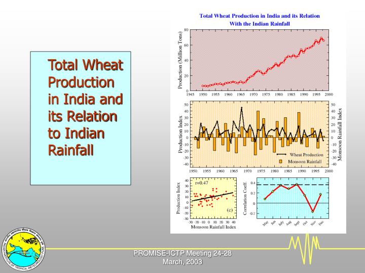 Total Wheat Production in India and its Relation to Indian Rainfall