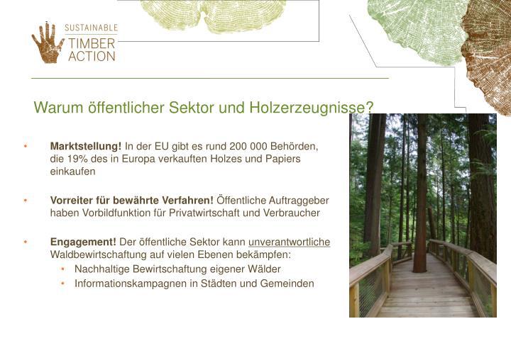 Warum öffentlicher Sektor und Holzerzeugnisse?