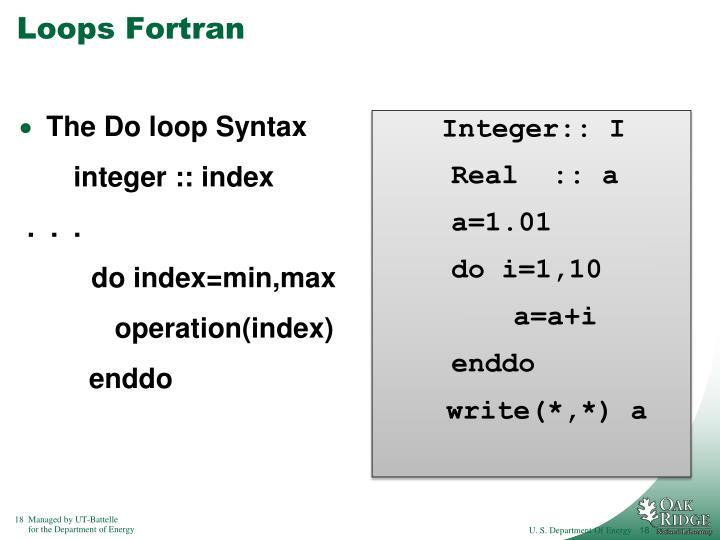 Loops Fortran