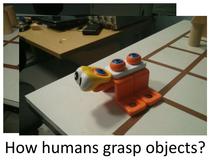 How humans grasp objects?