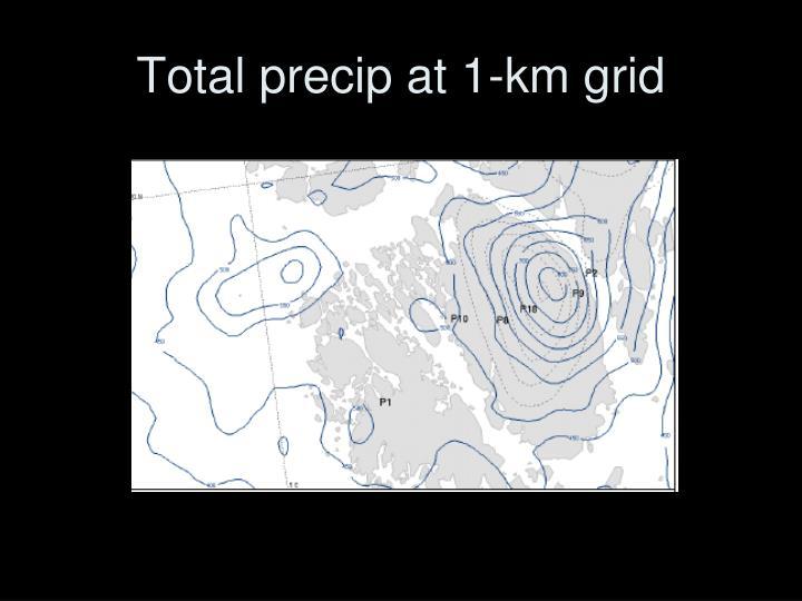 Total precip at 1-km grid