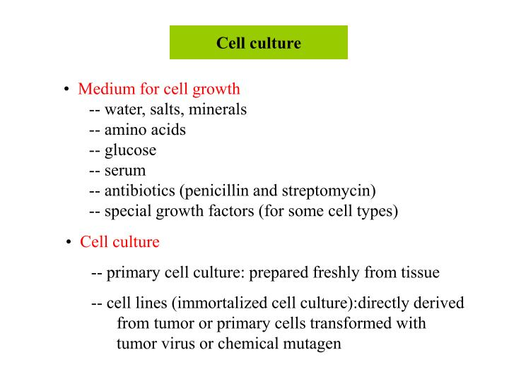 Cell culture