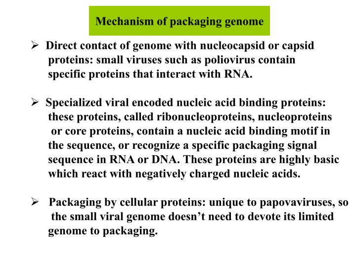 Mechanism of packaging genome