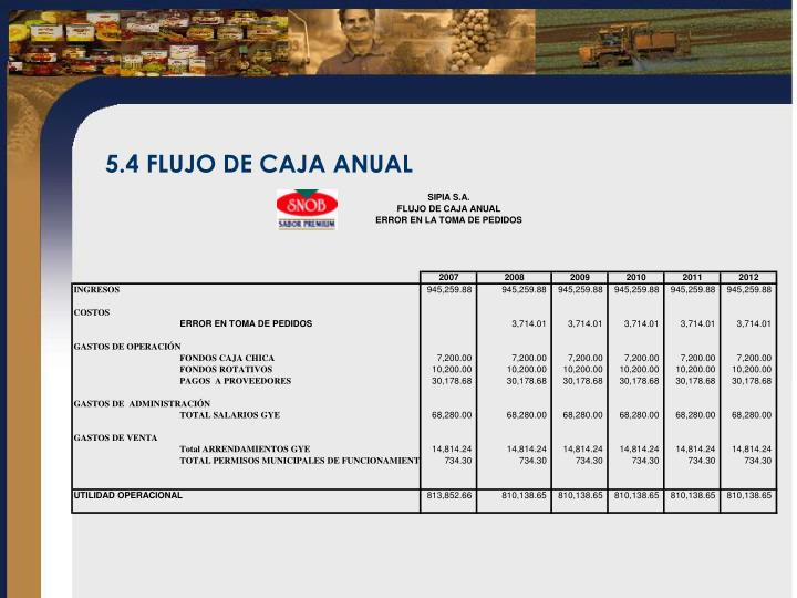 5.4 FLUJO DE CAJA ANUAL