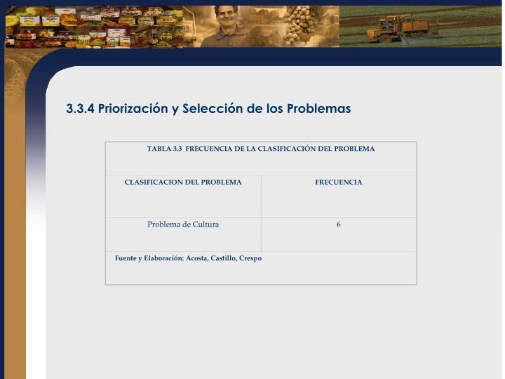 TABLA 3.3  FRECUENCIA DE LA CLASIFICACIÓN DEL PROBLEMA