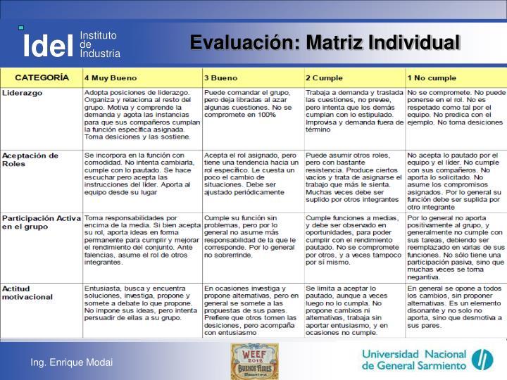 Evaluación: Matriz Individual