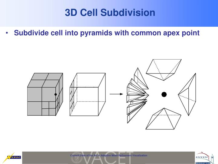 3D Cell Subdivision