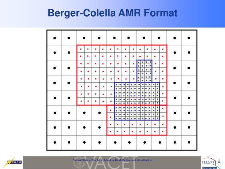Berger-Colella AMR Format