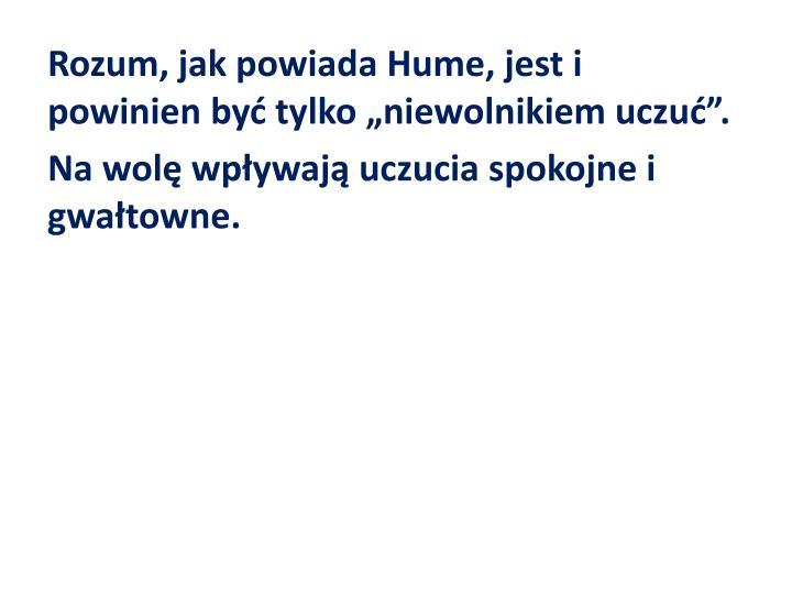 Rozum, jak powiada Hume
