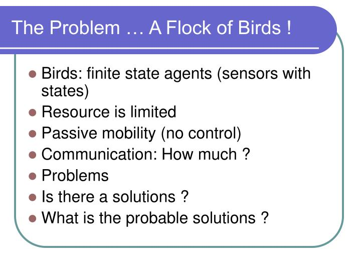 The Problem … A Flock of Birds !