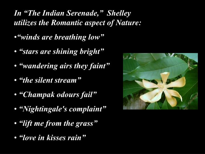 "In ""The Indian Serenade,""  Shelley utilizes the Romantic aspect of Nature:"